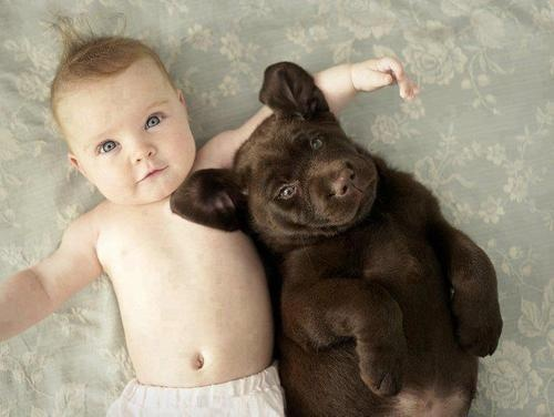 baby with pup