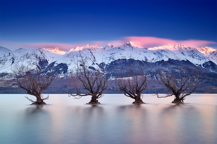 Glenorchy-Willows-Line-Up-Sunrise-Remarkables-Snow-Mountains-Lake-Wakatipu-Queenstown-New-Zealand-Winter-Paul-Reiffer-Professional-Medium-Format-Landscape-Photographer-PureNewZealand.jpg
